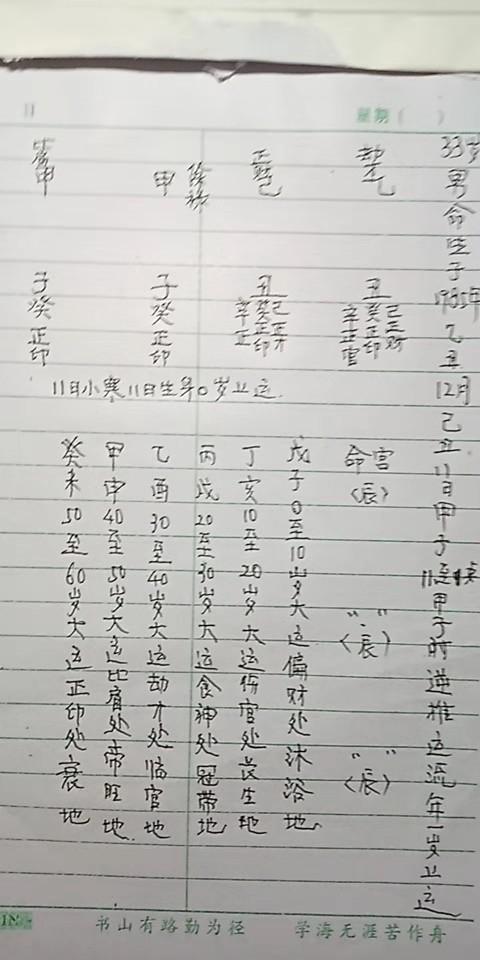 1985年12月出生,生肖牛命理分析,生辰八字乙丑年巳丑月甲子日甲子时